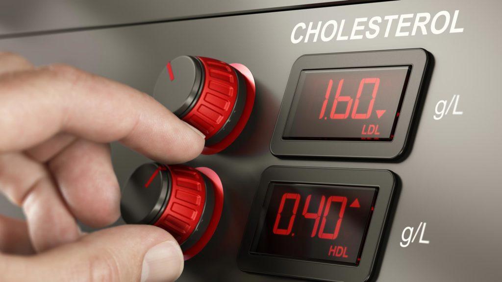 Colesterolo buono vs cattivo